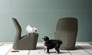 Odette - Complementi moderni di design - gallery 2